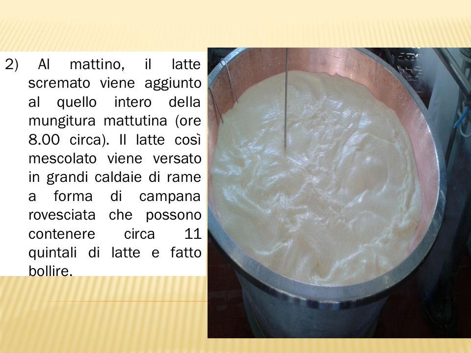 2) Al mattino, il latte scremato viene aggiunto al quello intero della mungitura mattutina (ore 8.00 circa).