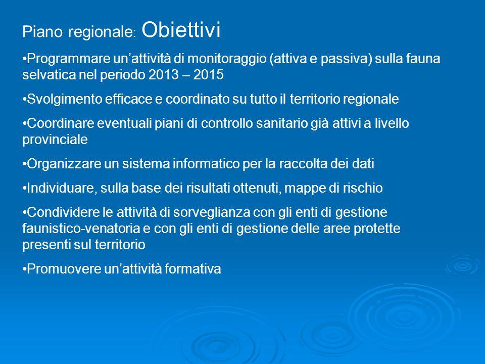 Piano regionale: Obiettivi