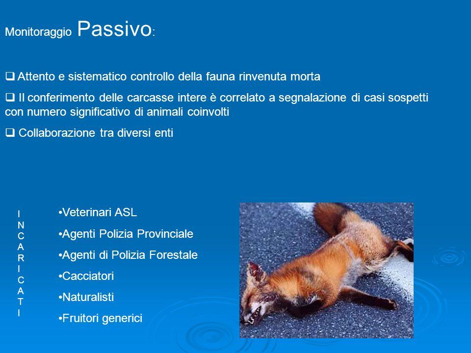 Monitoraggio Passivo: