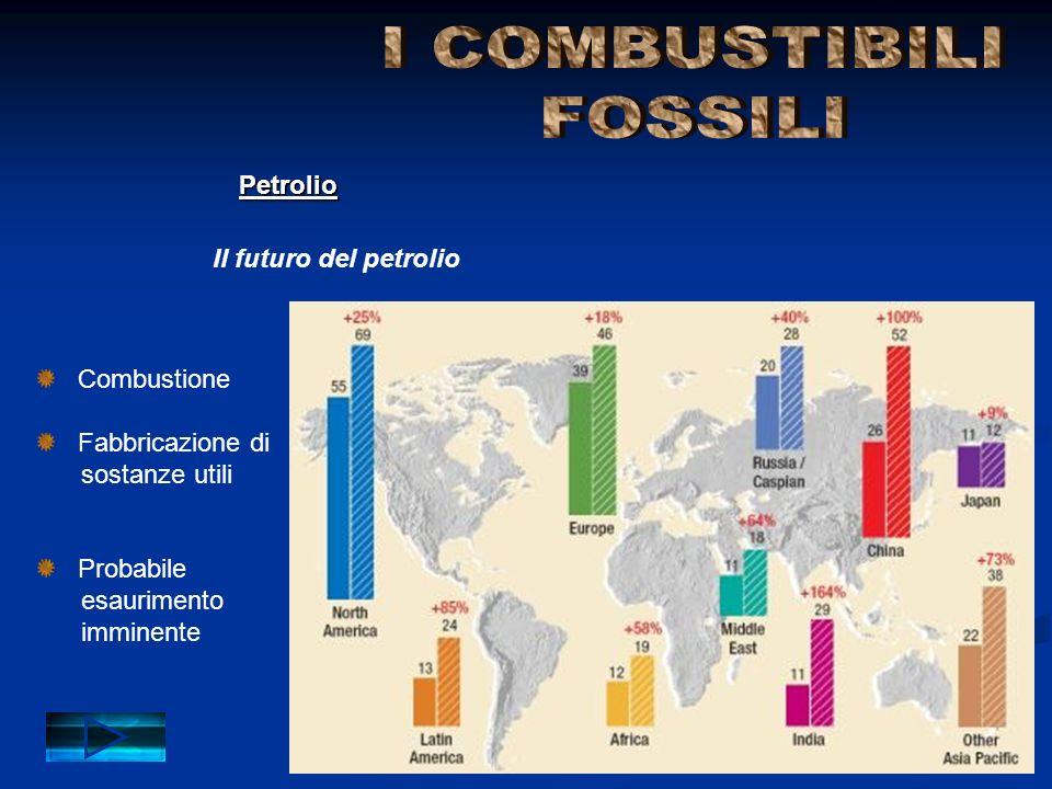 I COMBUSTIBILI FOSSILI Petrolio Il futuro del petrolio Combustione