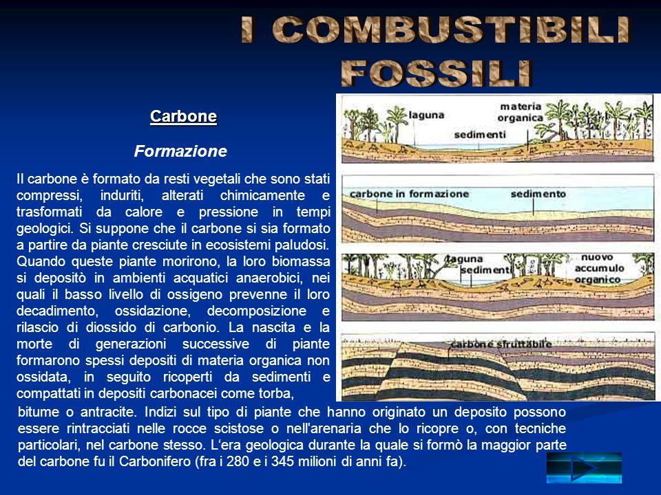 I COMBUSTIBILI FOSSILI Carbone Formazione