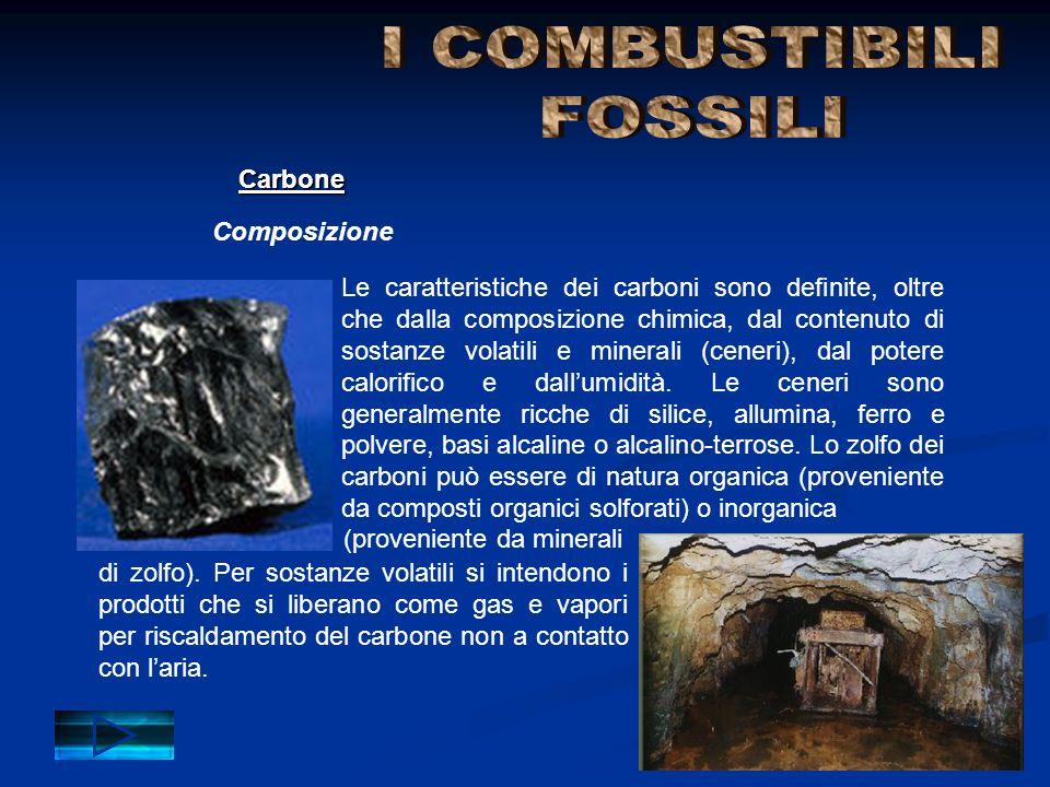 I COMBUSTIBILI FOSSILI Carbone Composizione