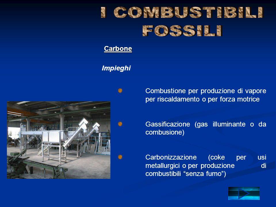 I COMBUSTIBILI FOSSILI Carbone Impieghi