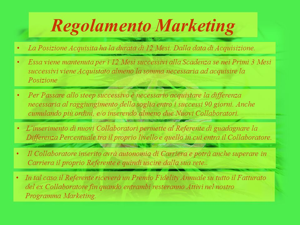 Regolamento Marketing