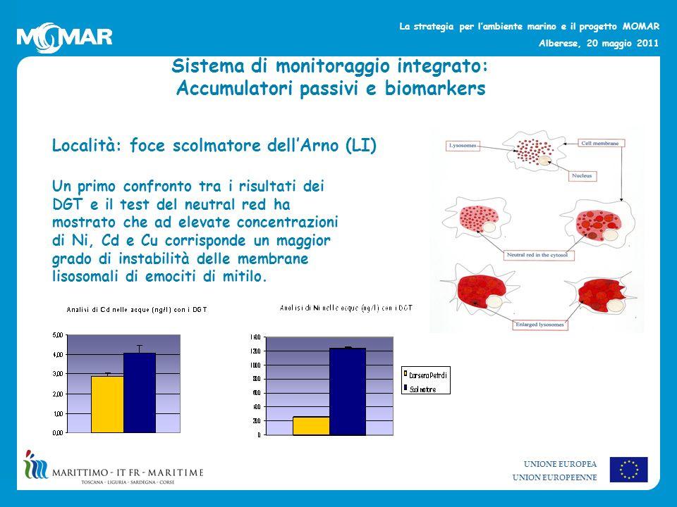 Sistema di monitoraggio integrato: Accumulatori passivi e biomarkers