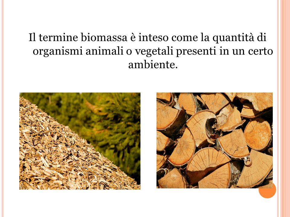 Il termine biomassa è inteso come la quantità di organismi animali o vegetali presenti in un certo ambiente.