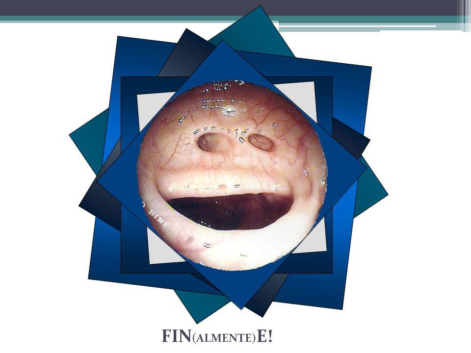FIN(ALMENTE)E!