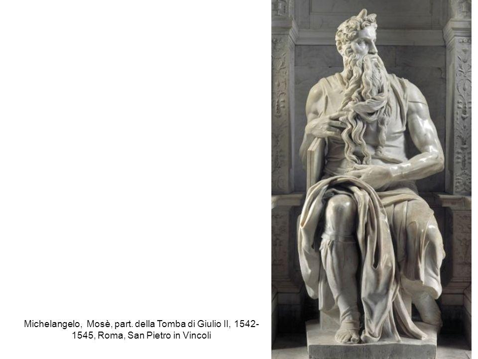 Michelangelo, Mosè, part