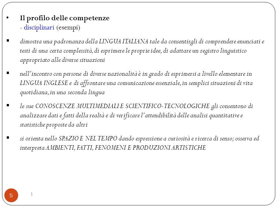 Il profilo delle competenze - disciplinari (esempi)