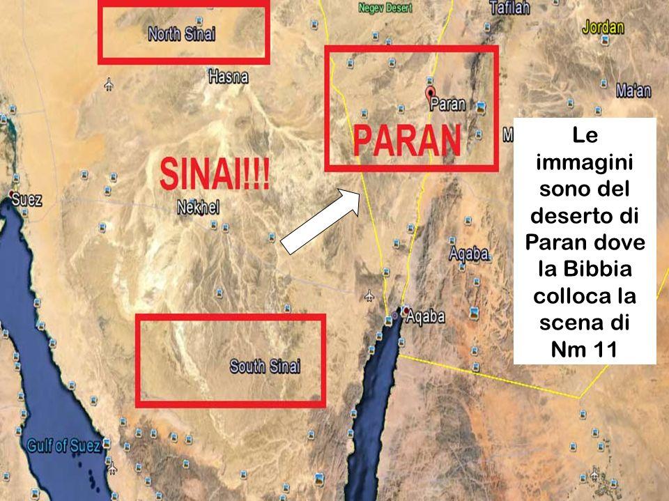 Le immagini sono del deserto di Paran dove la Bibbia colloca la scena di Nm 11