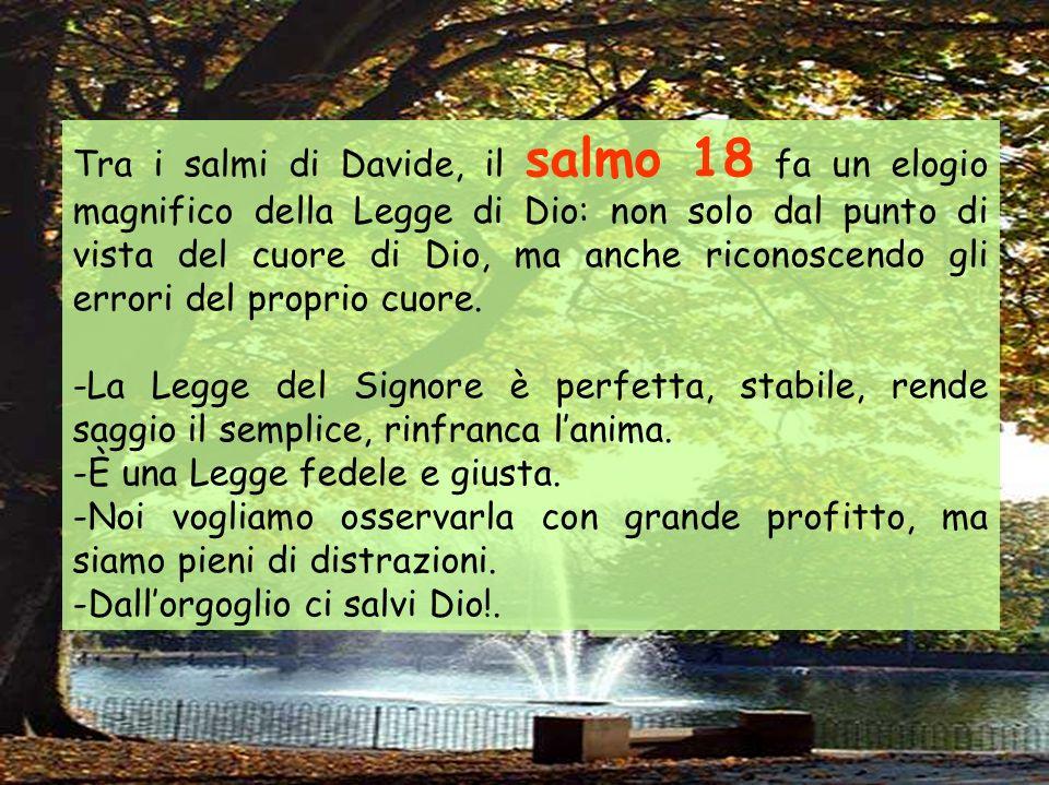 Tra i salmi di Davide, il salmo 18 fa un elogio magnifico della Legge di Dio: non solo dal punto di vista del cuore di Dio, ma anche riconoscendo gli errori del proprio cuore.