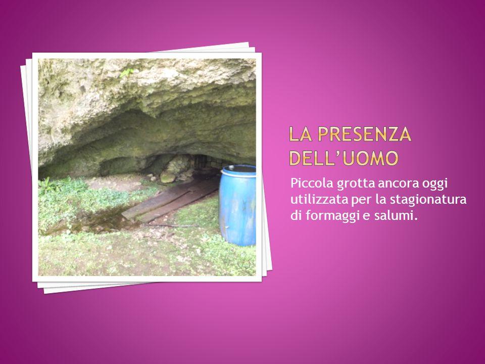 La presenza dell'uomo Piccola grotta ancora oggi utilizzata per la stagionatura di formaggi e salumi.