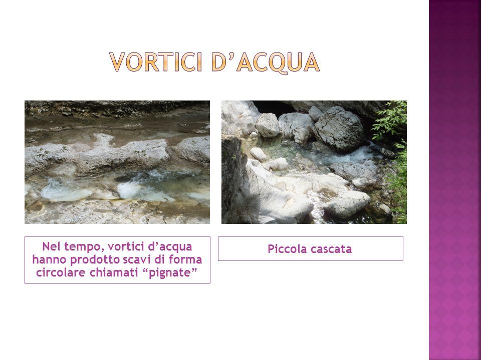 Vortici d'acqua Nel tempo, vortici d'acqua hanno prodotto scavi di forma circolare chiamati pignate