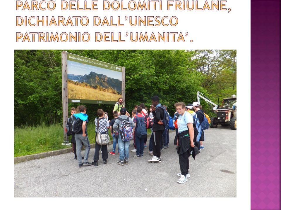 Parco delle dolomiti friulane, dichiarato dall'UNESCO patrimonio dell'umanita'.
