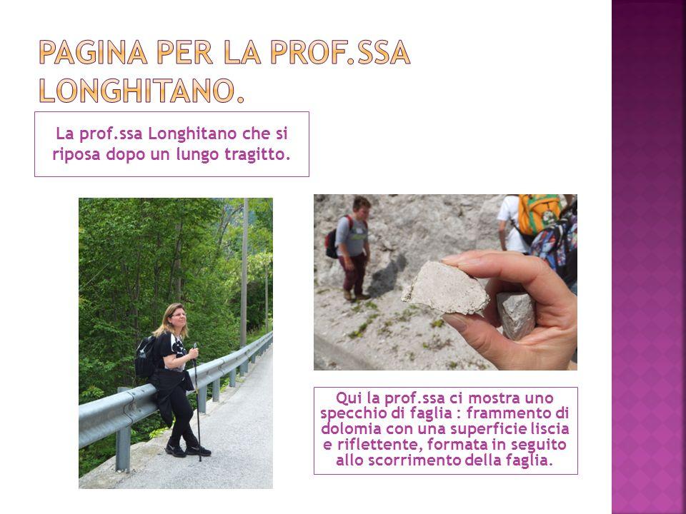 Pagina per la prof.ssa longhitano.