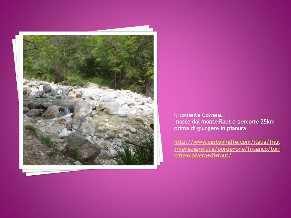 Il torrente Colvera. nasce dal monte Raut e percorre 25km prima di giungere in pianura.