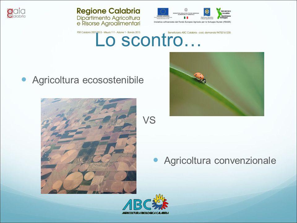 Lo scontro… Agricoltura ecosostenibile VS Agricoltura convenzionale
