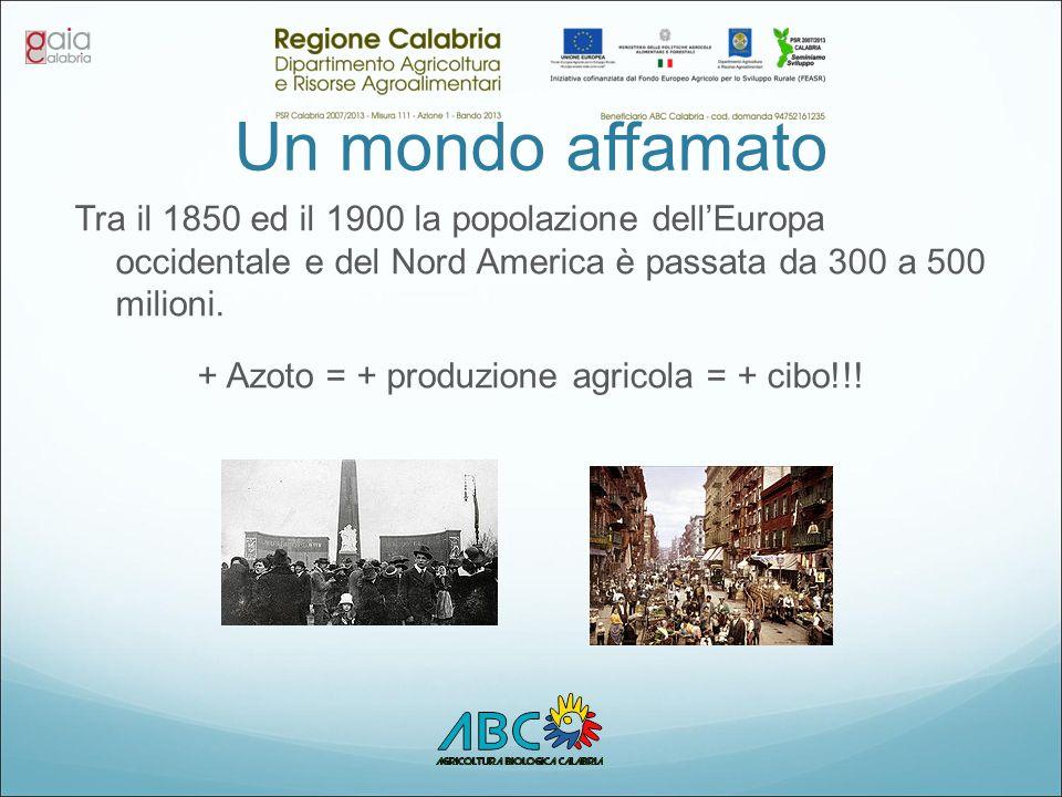 + Azoto = + produzione agricola = + cibo!!!