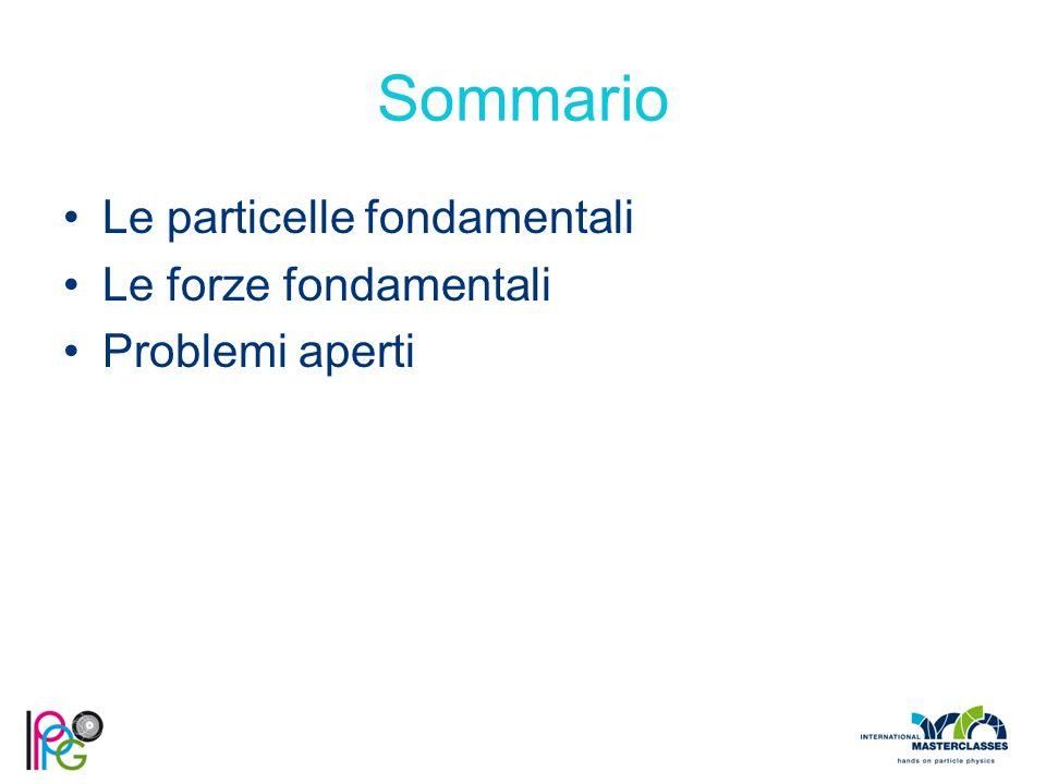 Sommario Le particelle fondamentali Le forze fondamentali