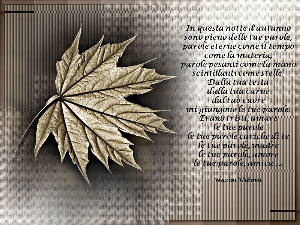 In questa notte d'autunno sono pieno delle tue parole,