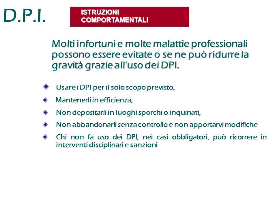 D.P.I. ISTRUZIONI COMPORTAMENTALI.