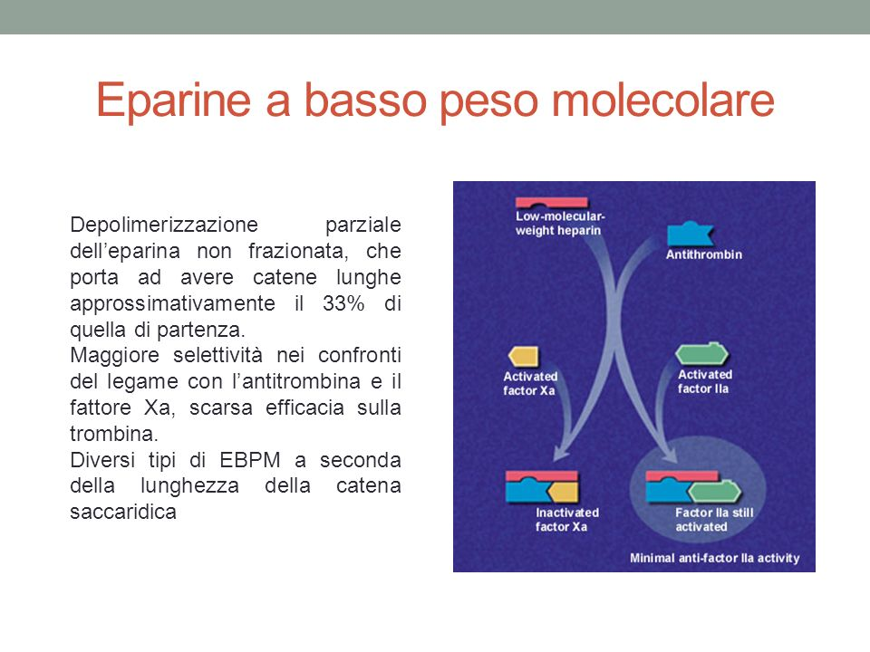 Eparine a basso peso molecolare