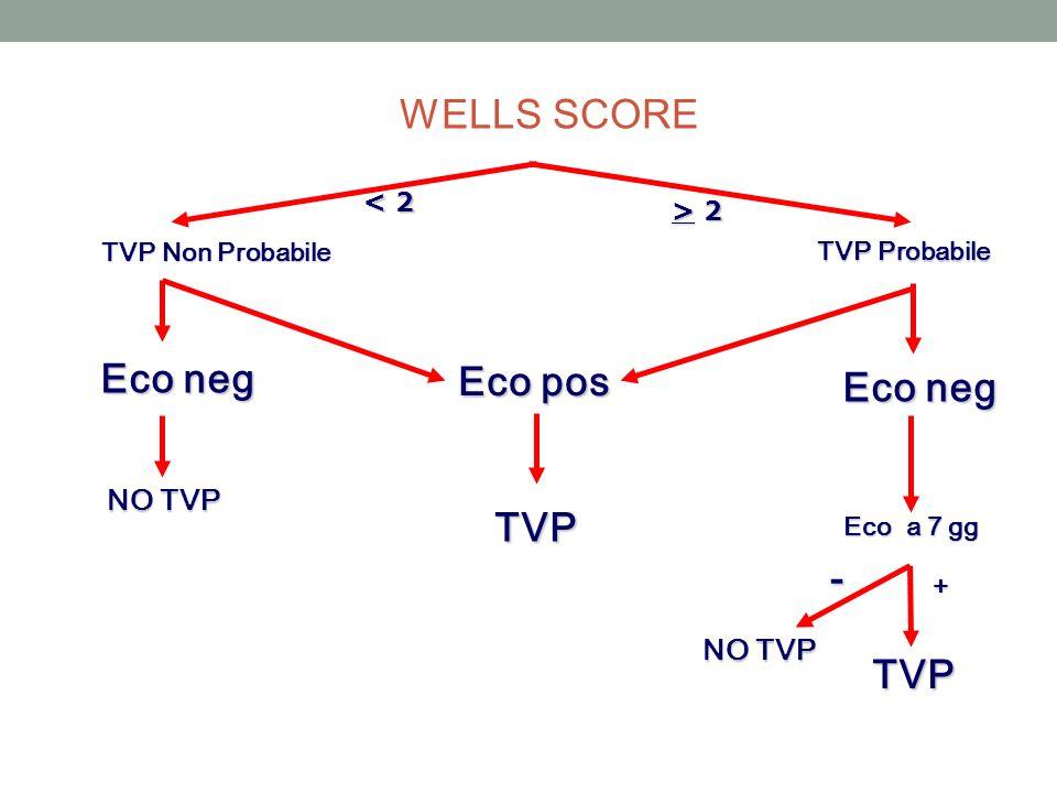 Eco neg Eco pos Eco neg TVP - TVP