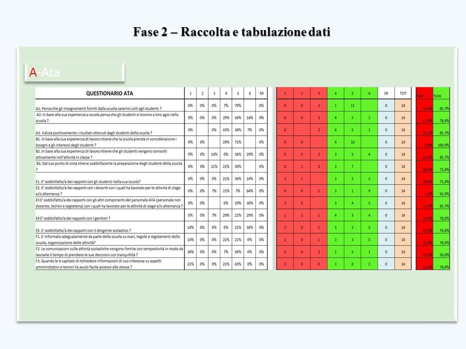 Fase 2 – Raccolta e tabulazione dati