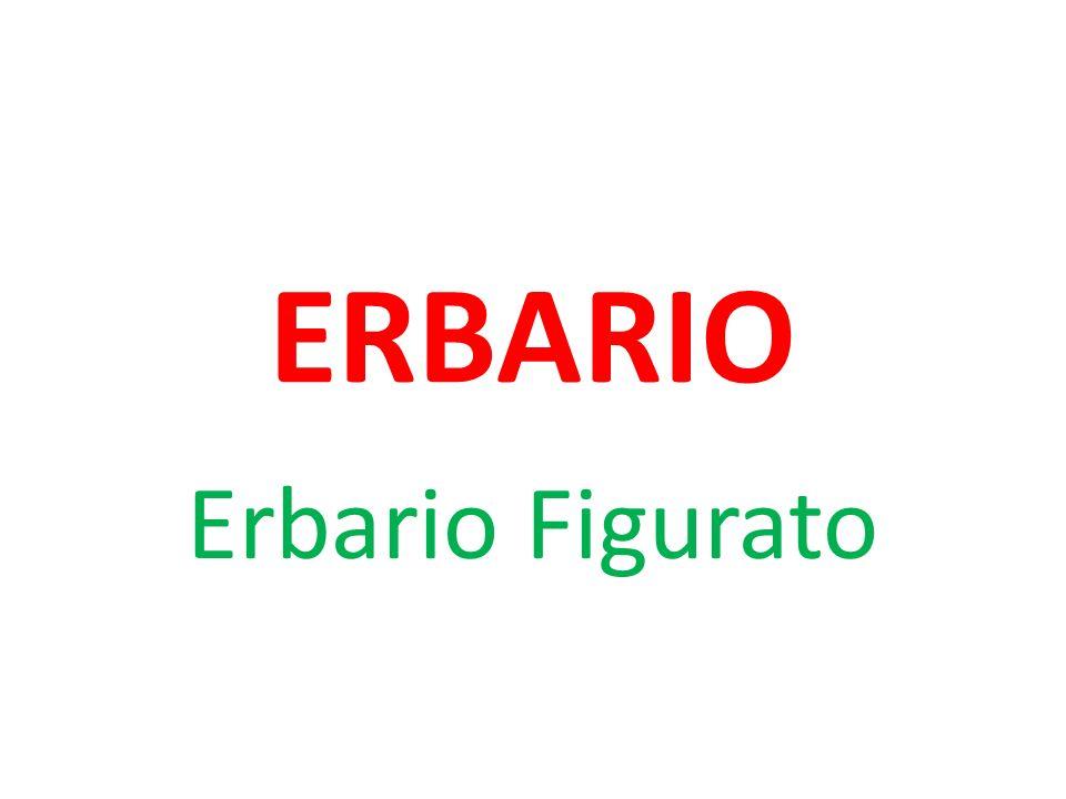ERBARIO Erbario Figurato