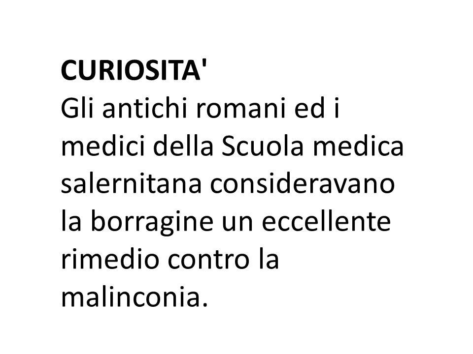 CURIOSITA Gli antichi romani ed i medici della Scuola medica salernitana consideravano la borragine un eccellente rimedio contro la malinconia.