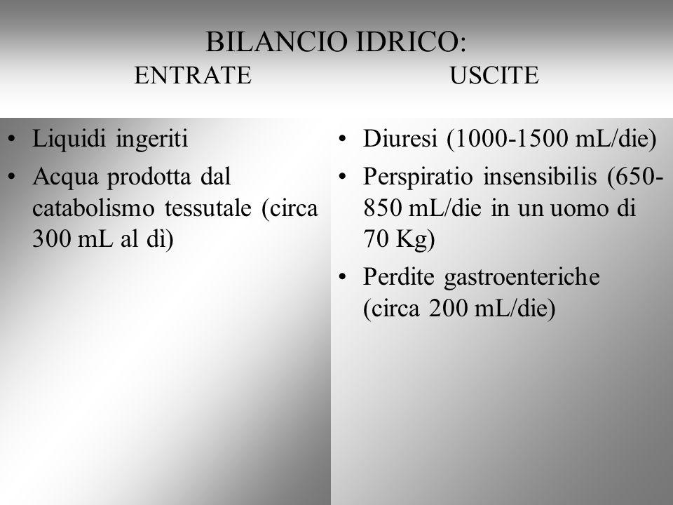 BILANCIO IDRICO: ENTRATE USCITE