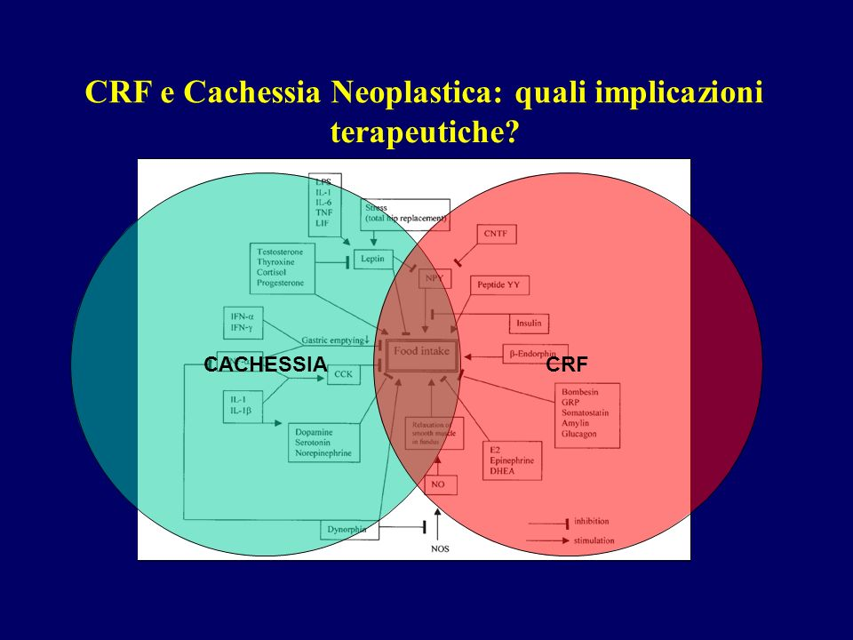 CRF e Cachessia Neoplastica: quali implicazioni terapeutiche