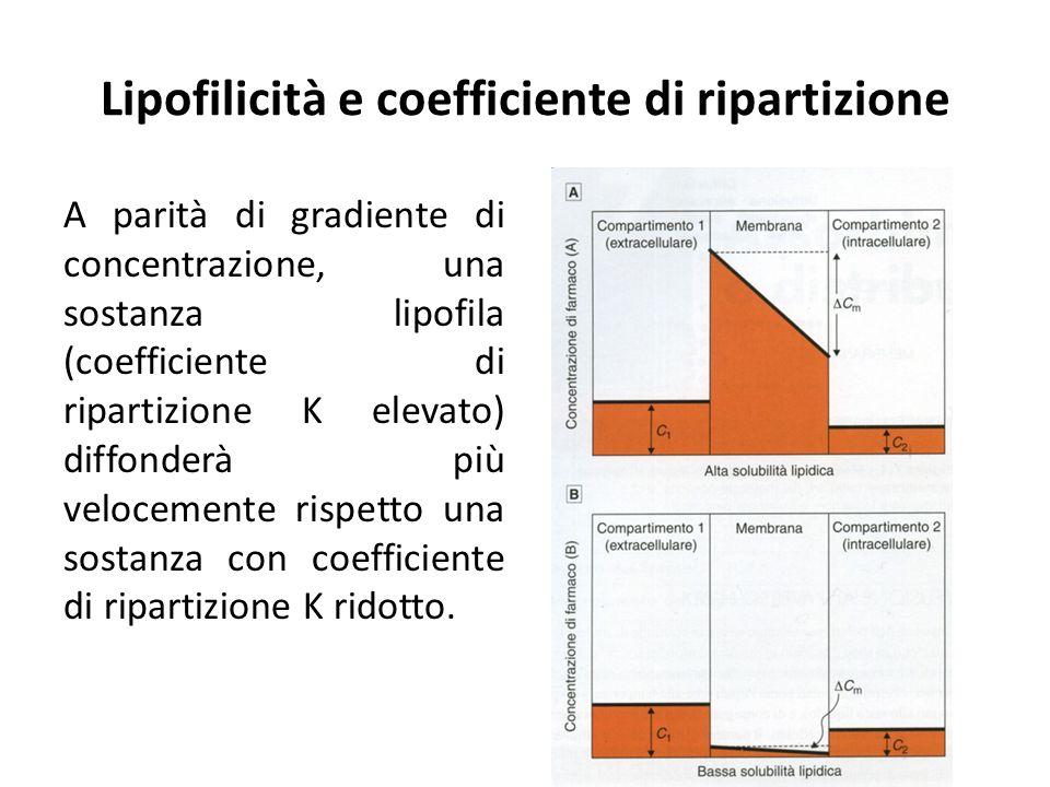 Lipofilicità e coefficiente di ripartizione