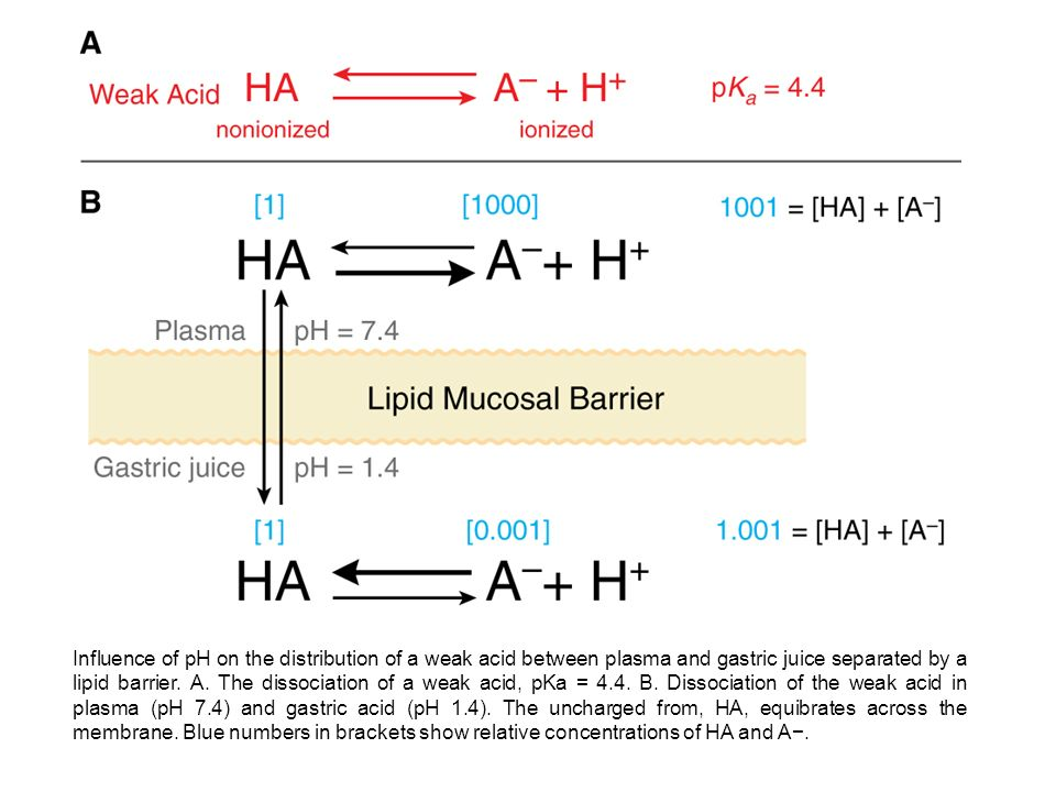 Influence of pH on the distribution of a weak acid between plasma and gastric juice separated by a lipid barrier.