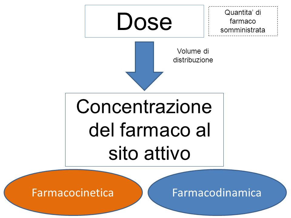 Concentrazione del farmaco al sito attivo
