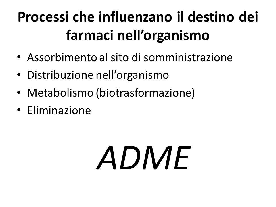 Processi che influenzano il destino dei farmaci nell'organismo