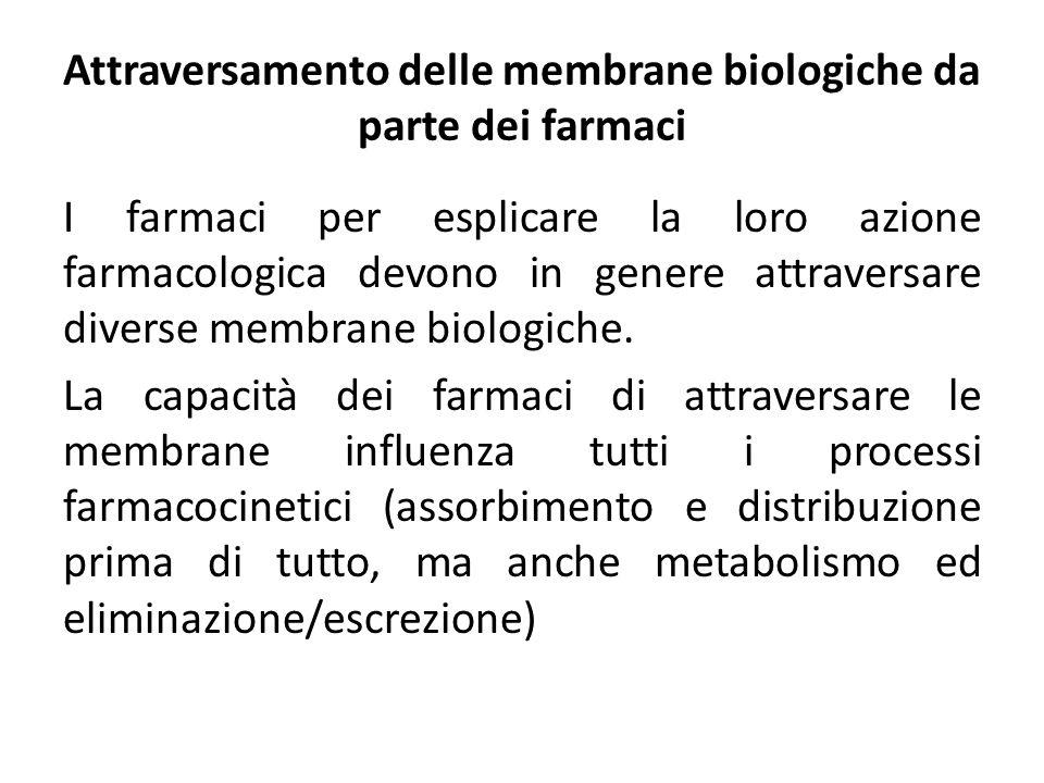 Attraversamento delle membrane biologiche da parte dei farmaci