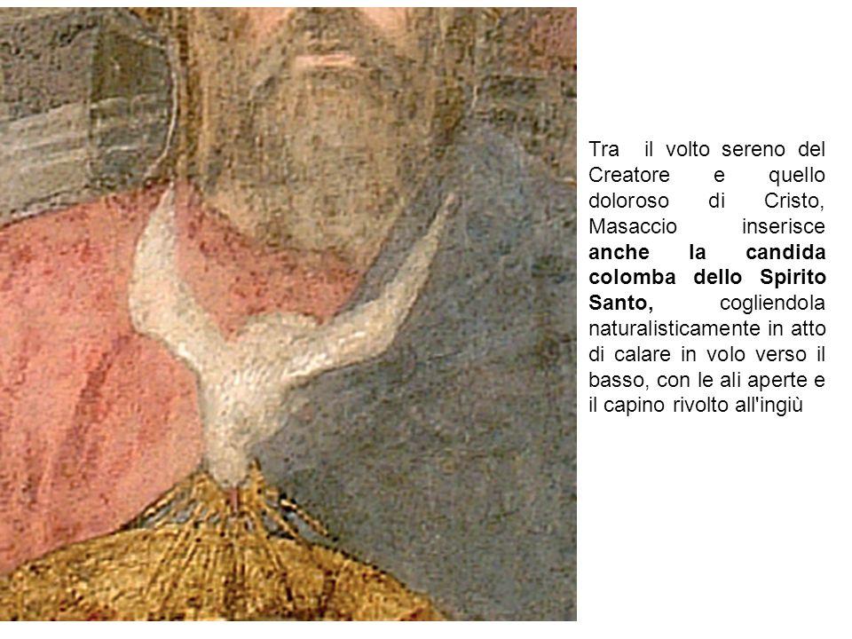 Tra il volto sereno del Creatore e quello doloroso di Cristo, Masaccio inserisce anche la candida colomba dello Spirito Santo, cogliendola naturalisticamente in atto di calare in volo verso il basso, con le ali aperte e il capino rivolto all ingiù