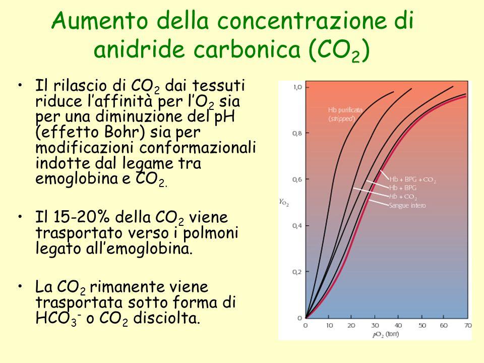 Aumento della concentrazione di anidride carbonica (CO2)