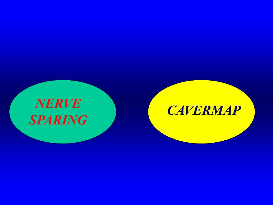 NERVE SPARING CAVERMAP