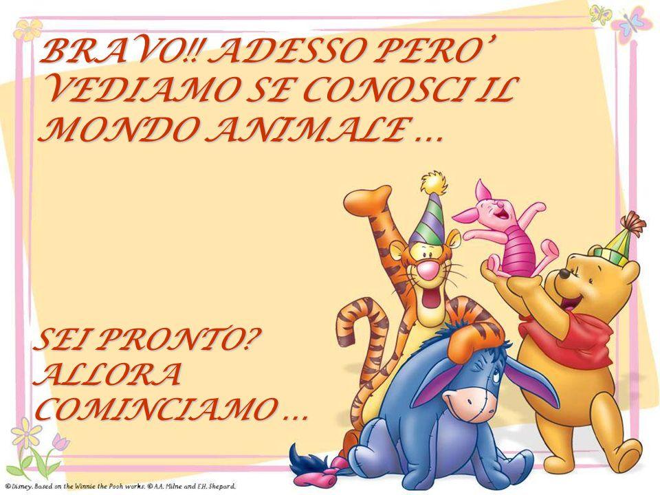 BRAVO!! ADESSO PERO' VEDIAMO SE CONOSCI IL MONDO ANIMALE …