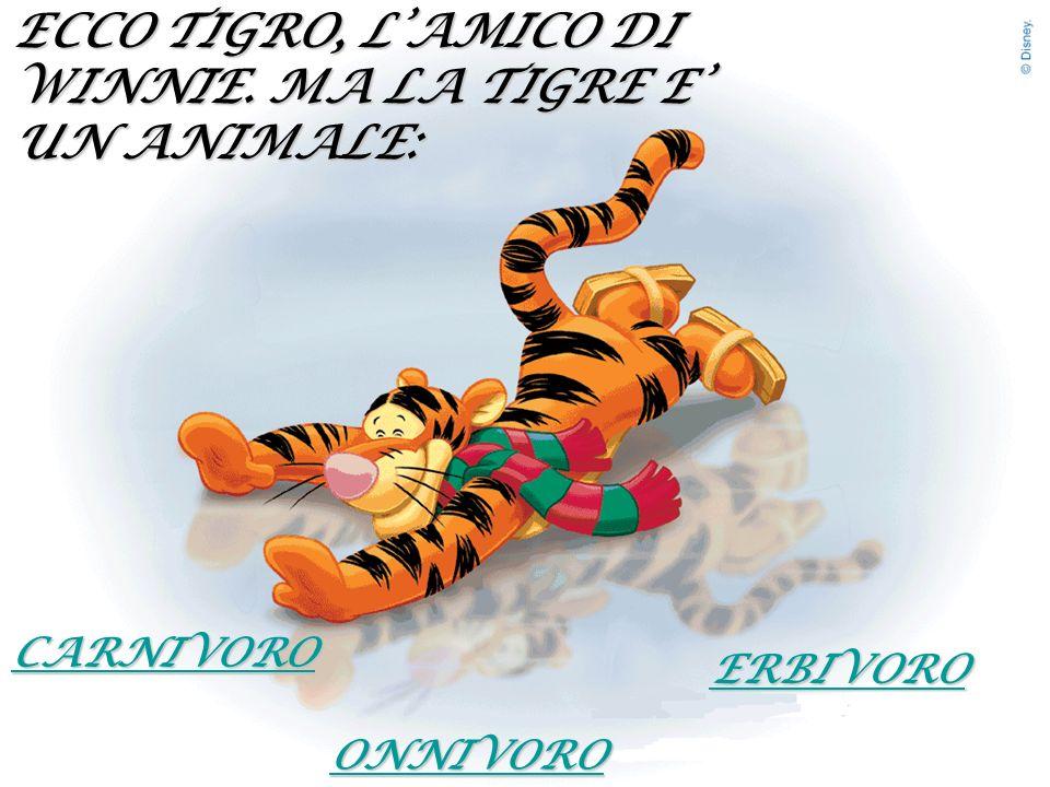 ECCO TIGRO, L'AMICO DI WINNIE. MA LA TIGRE E' UN ANIMALE: