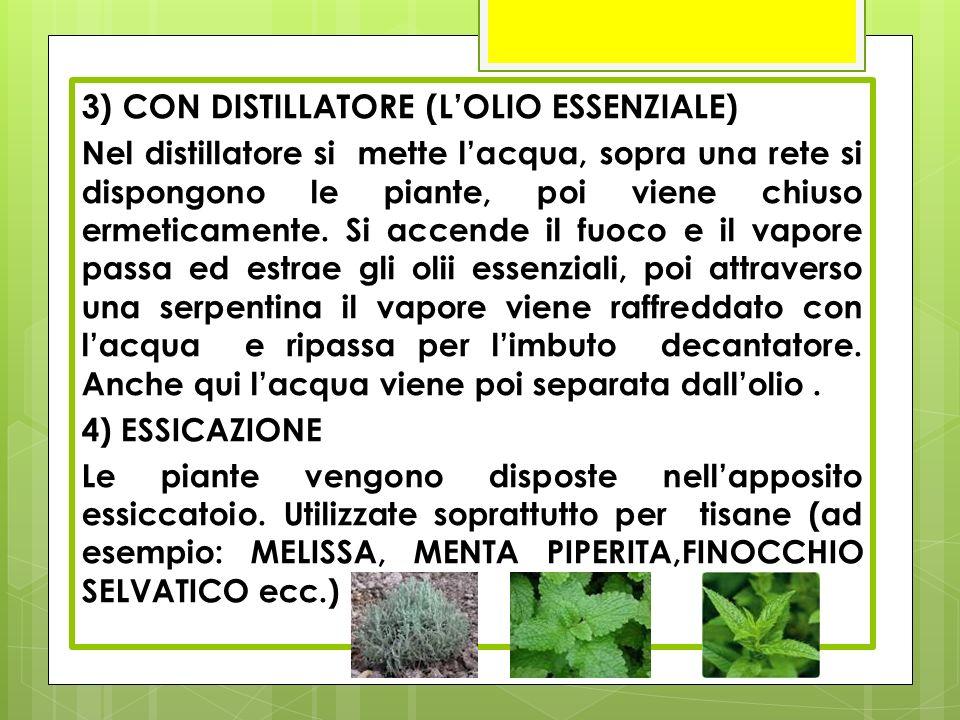 3) CON DISTILLATORE (L'OLIO ESSENZIALE)