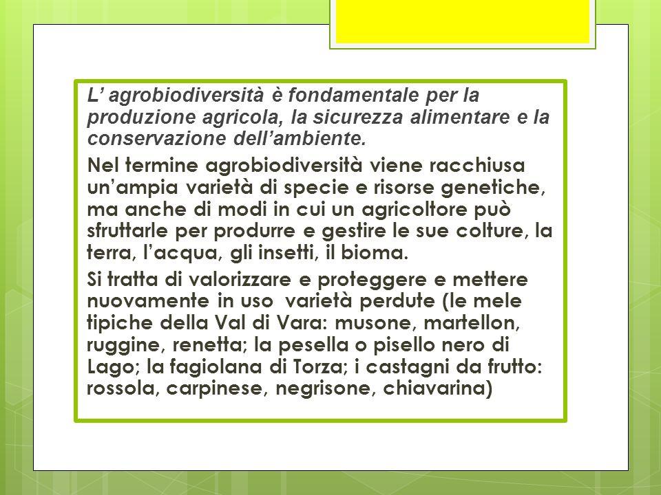 L' agrobiodiversità è fondamentale per la produzione agricola, la sicurezza alimentare e la conservazione dell'ambiente.