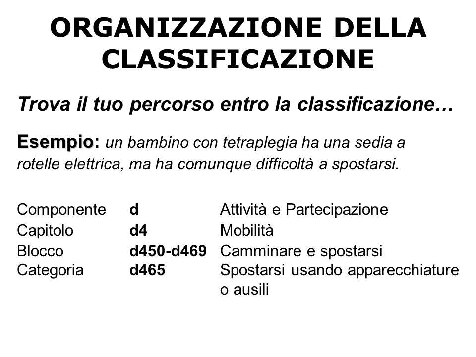 ORGANIZZAZIONE DELLA CLASSIFICAZIONE