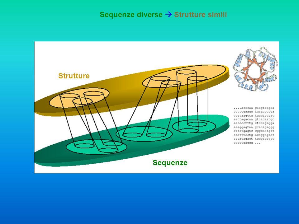 Sequenze diverse  Strutture simili