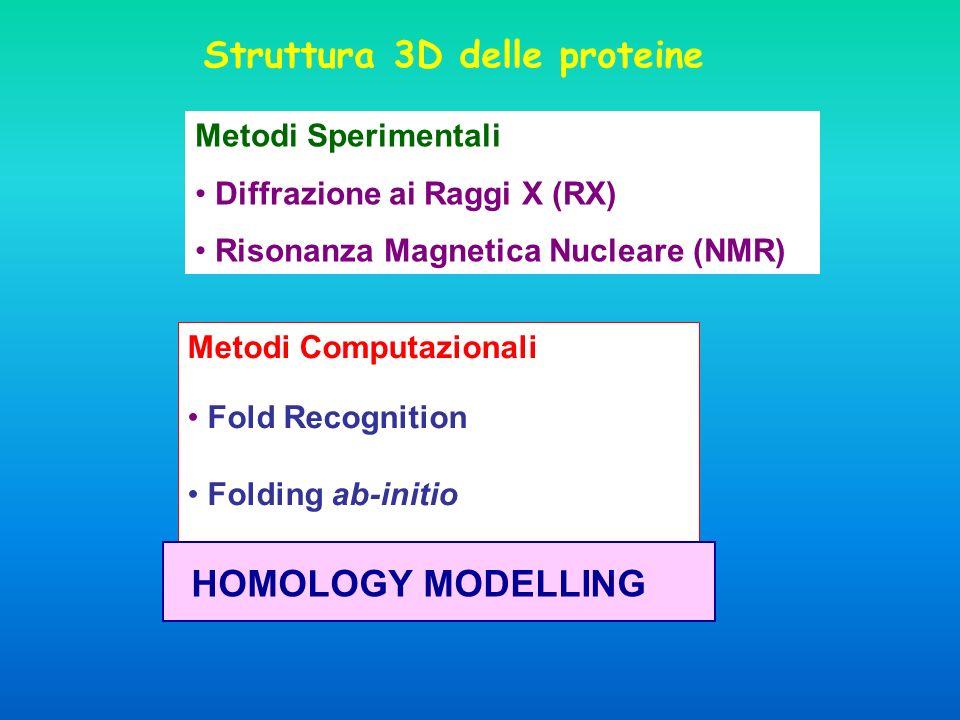 Struttura 3D delle proteine
