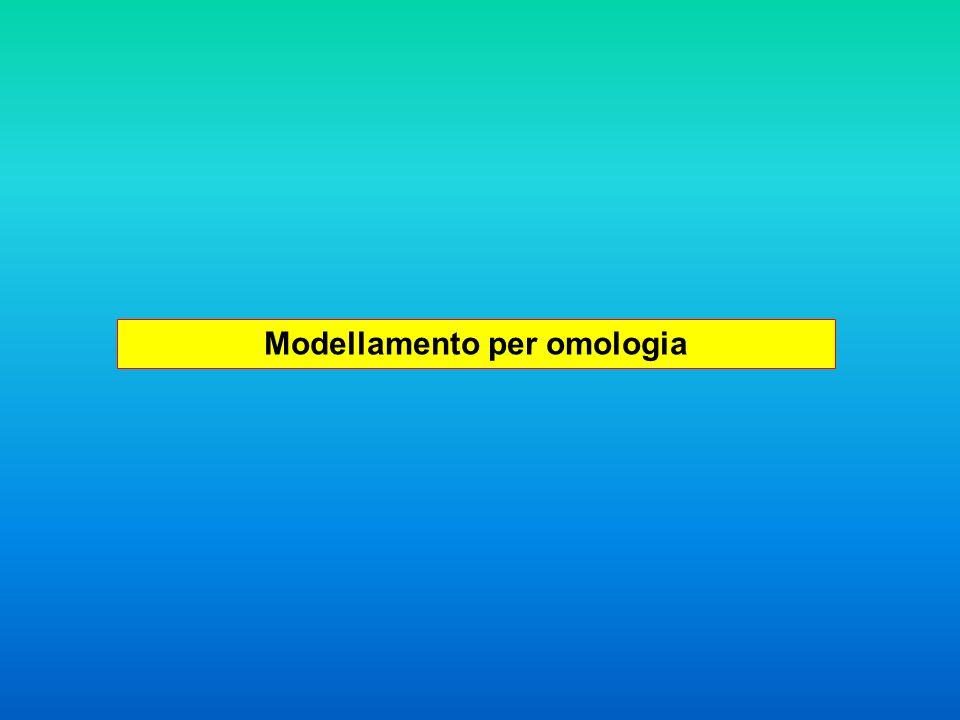 Modellamento per omologia