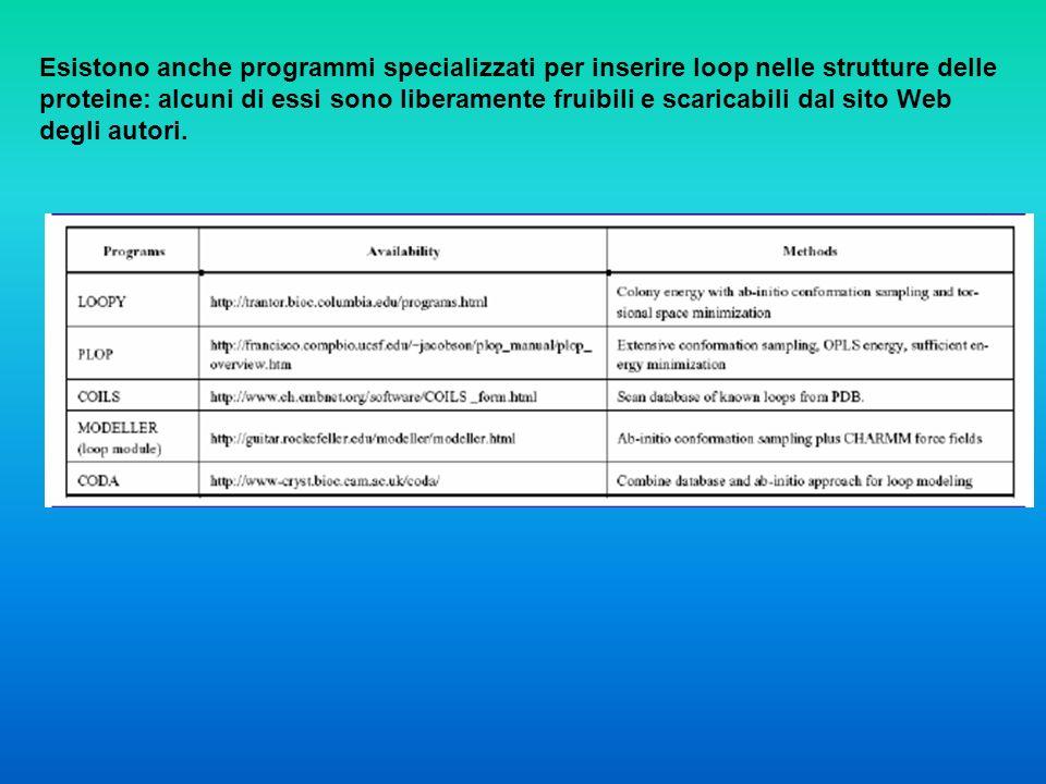 Esistono anche programmi specializzati per inserire loop nelle strutture delle