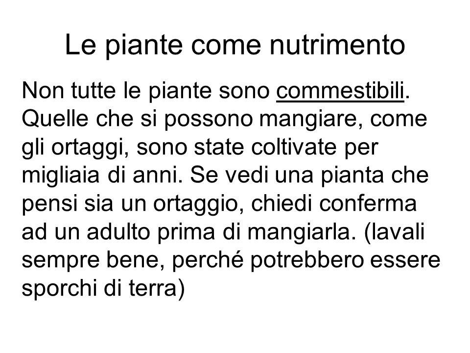 Le piante come nutrimento